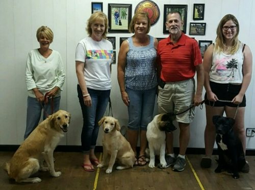 Well behaved dogs pose with owners.